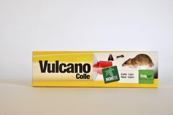 vulcano muizen ratten spinnen lijm